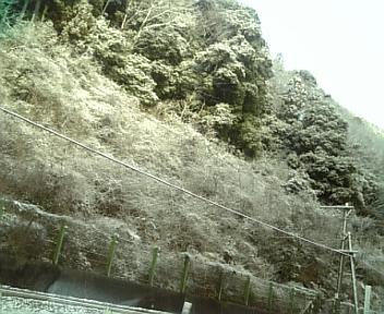image/2010-12-25T08:14:43-1.jpg