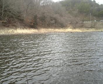 image/2011-03-11T18:24:22-1.jpg