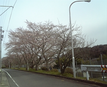 image/2011-04-03T21:14:08-2.jpg