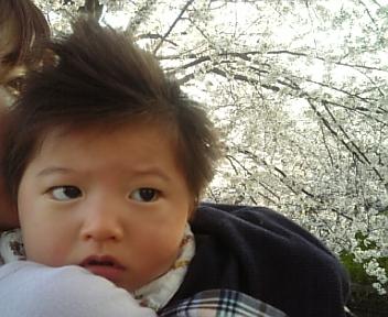 image/2011-04-09T18:31:19-3.jpg