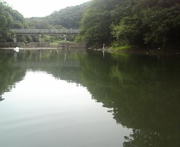 image/2011-07-29T19:45:48-4.jpg