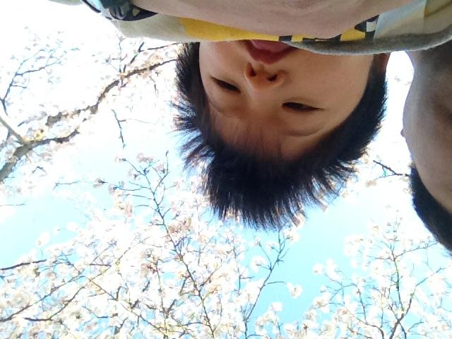 image/2012-04-12T17:30:32-1.JPG
