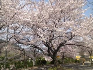 image/2012-04-13T22:24:26-4.jpg
