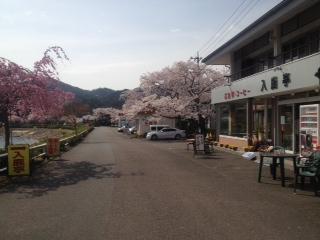 image/2012-04-13T22:24:26-5.jpg