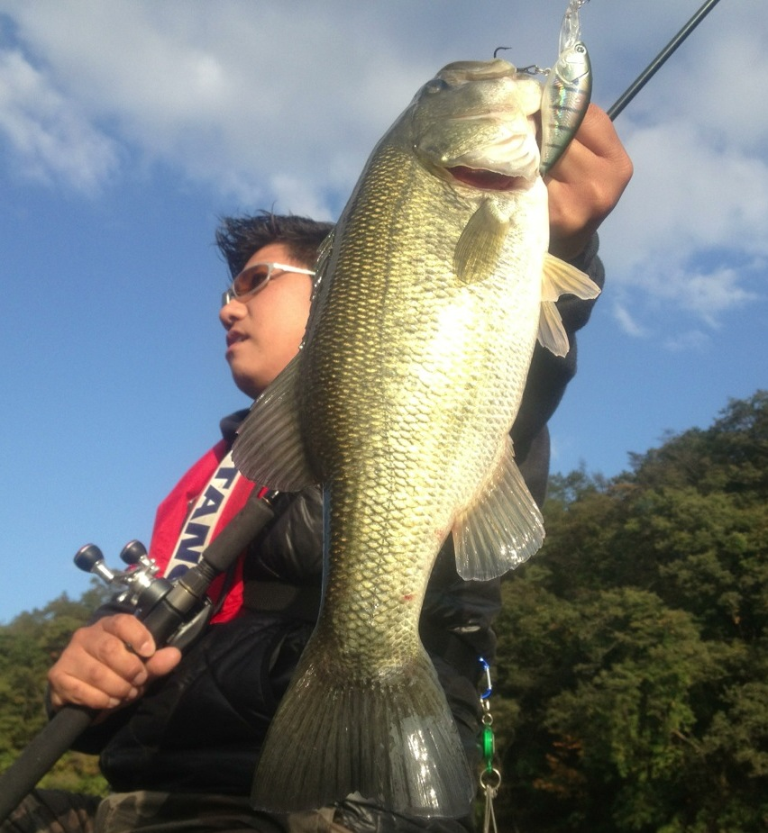 image/2012-11-08T23:29:25-1.JPG