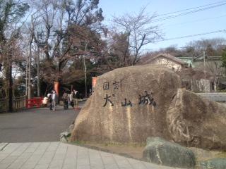 image/2013-03-24T16:50:21-1.JPG