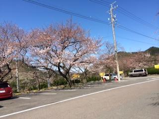 image/2014-04-02T12:42:43-4.jpeg