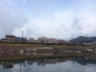 image/2014-04-06T16:49:42-1.jpeg