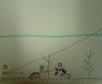 バシバシシェイクPart 2
