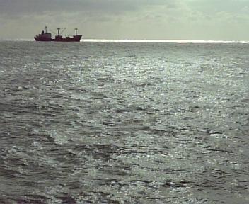 9月25日三国釣行